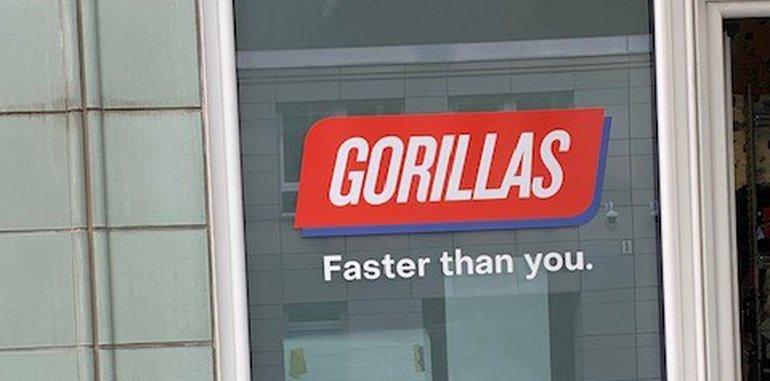 Gorillas: Cooles Image - miese Bedingungen